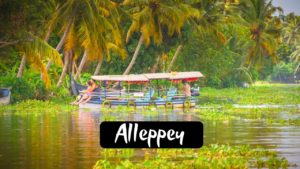 Read more about the article 11 Best Captivating Tourist Places To Visit in Alleppey