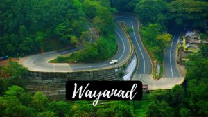 Read more about the article 15 Majestic Places to visit Wayanad heaven for Every Traveler