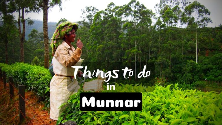 Read more about the article 11 Mesmerizing Things to do in Munnar for Memorable Vacation