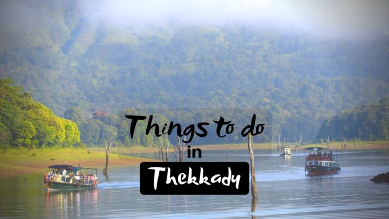 Read more about the article 11 Best Things to do in Thekkady Indulge in Nature with these Activities