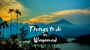 Read more about the article 11 Famous Thrilling Things to do in Wayanad for an exciting experience