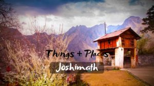 Read more about the article Best Activities & Tourist Places To Visit in Joshimath